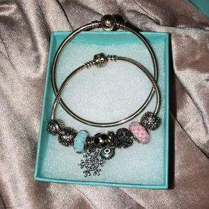 COPY - Pandora Charm bracelets with charms